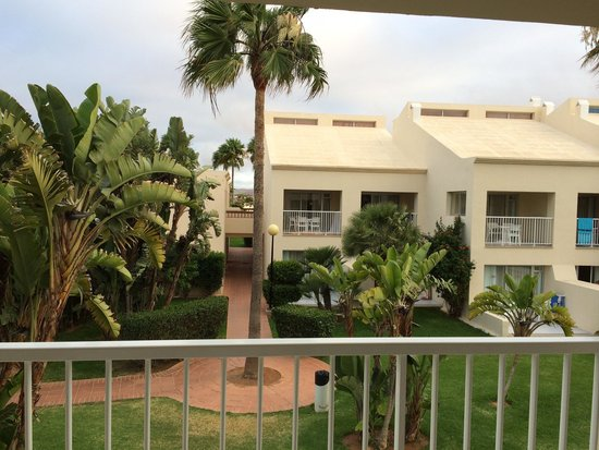 ClubHotel Riu Oliva Beach Resort : Terraza y jardines comunes (hab. 2220)