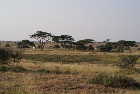 Namiri Plains, Asilia Africa: The camp
