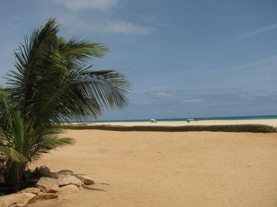 Hotel Riu Touareg: Beach