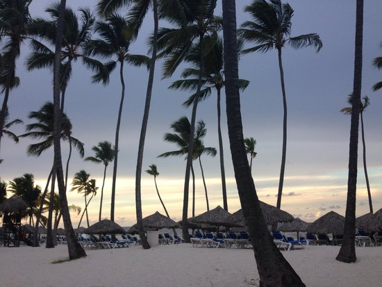 Dreams Palm Beach Punta Cana: Sunset.