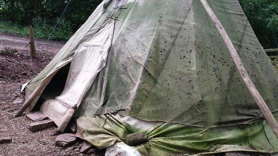 Hollybush Inn & Campsite: Mouldy tepee