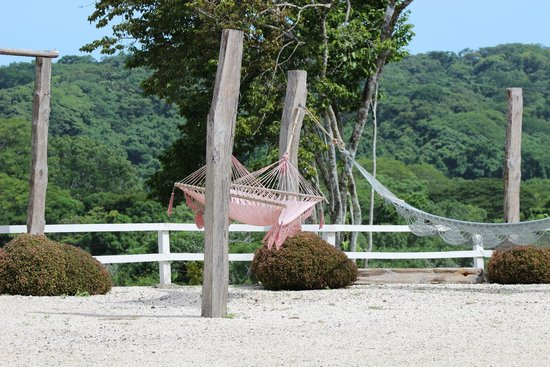 La Posada Bed & Breakfast: Hammocks outside