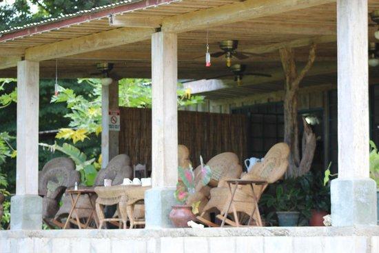La Posada Bed & Breakfast: Terrace