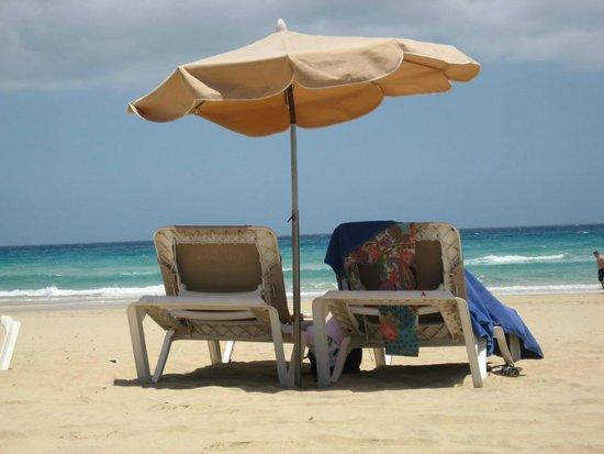 Occidental Jandia Mar : Beach