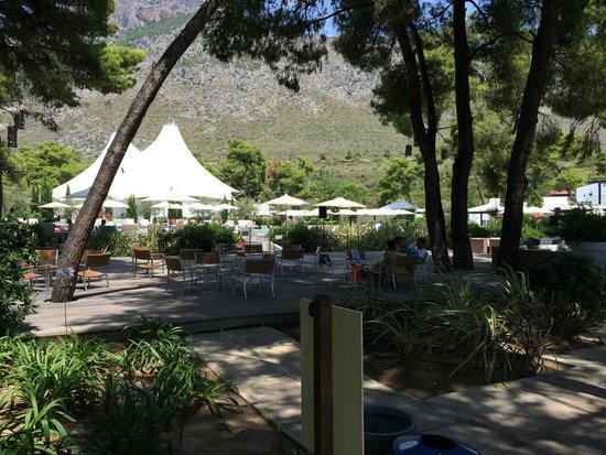 Club Med Gregolimano: Piscine et terrasse