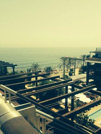Gran Hotel Guadalpin Banus: View