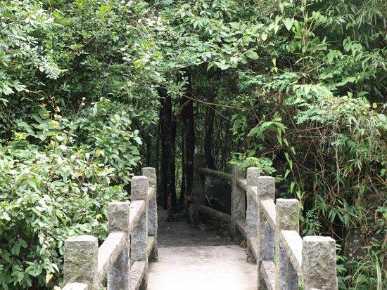 Mt. Gupo National Forest Park: Salah satu akses ke National Park.