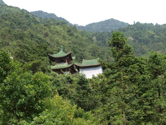 Mt. Gupo National Forest Park: Kuil kuno di atas bukit.