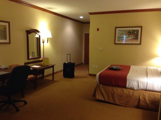 Best Western Plus Northshore Inn: Great room