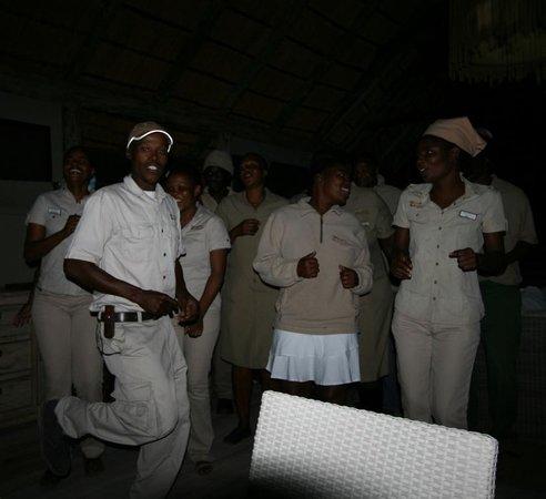 Ghoha Hills Savuti: Rollier à long brin : porte drapeau du Botswana