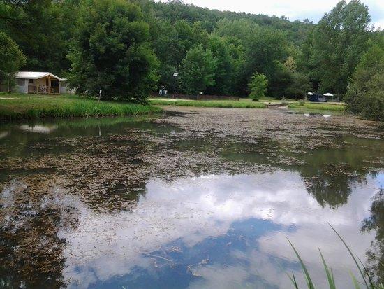 Camping Aqua Viva: etang