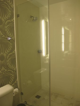 The Silversmith Hotel: Heavenly shower in Rm 302.