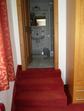 Hotel Ristorante Schaurhof : bagno stanza singola