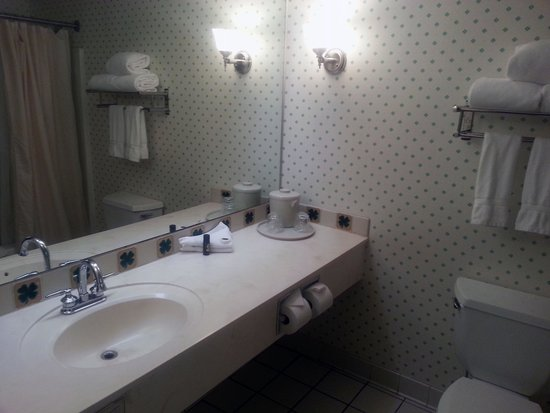 Fitz Casino and Hotel: Bathroom 1