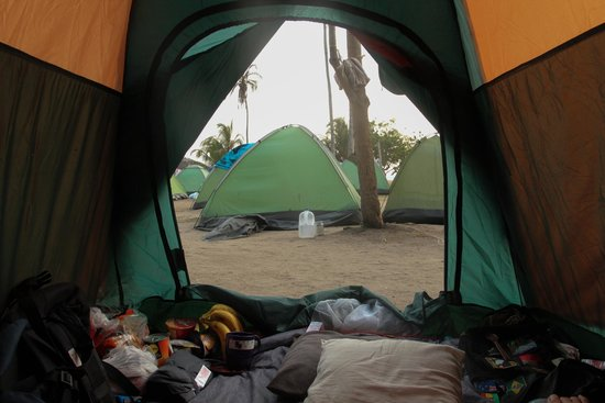Camping Tayrona: View from my Own Tent!