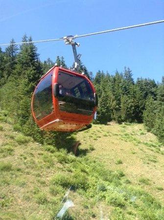 Crystal Mountain Scenic Gondola Ride: Gondola