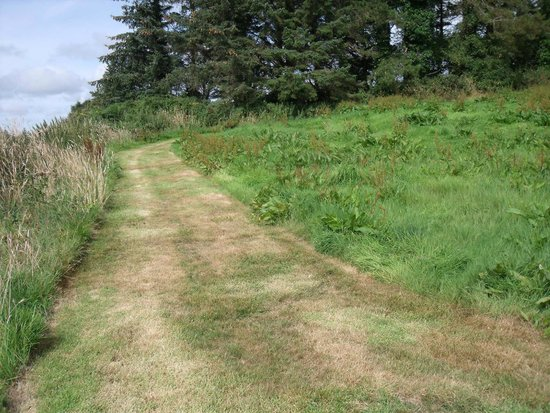 St. Lawrence Country Guest House: The paths through the grounds
