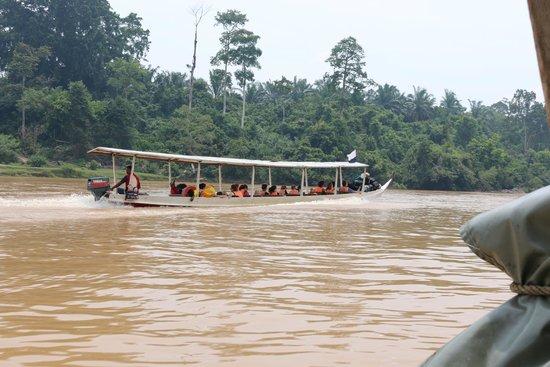 Taman Negara National Park : Transport long boat