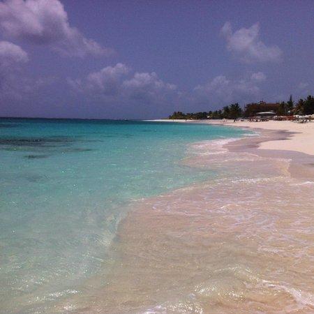 Shoal Bay : The Shore