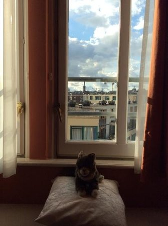 De L'Europe Amsterdam: Lil Bub enjoying the scenic sitting area in the suite!