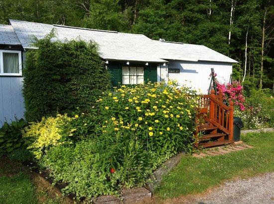 Adirondack Sunrise Motel & Cabins : Flowers everywhere