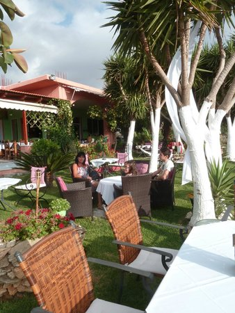 Taverna Vassilis - Katse Kala: terrasse calme et verte