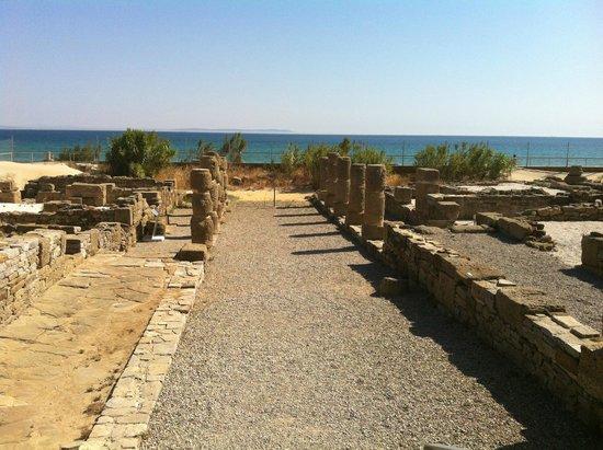Conjunto Arqueológico Baelo Claudia: Panoramica