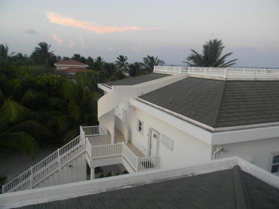 Tara del Sol: Roof top deck
