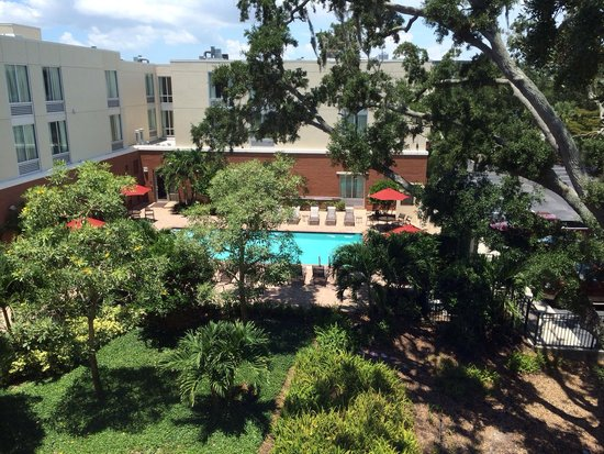 Hyatt Place Sarasota / Bradenton Airport: View of the pool