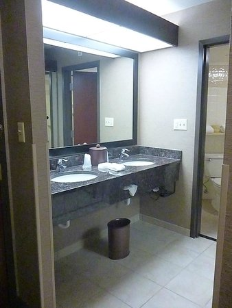 Drury Inn & Suites Atlanta South: Double vanity, very clean