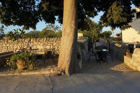 Artemisia Resort: esterni