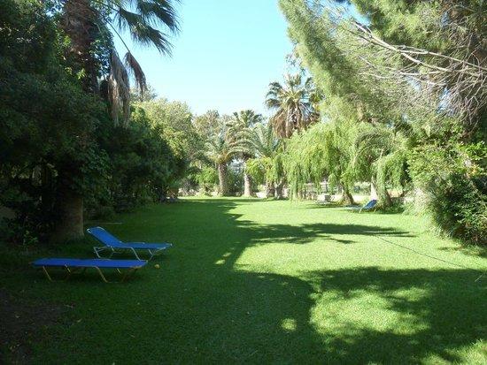 Damnoni Paradise: vegetation luxuriante