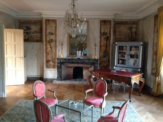 Hotellerie du Chateau de Floure : Reading room