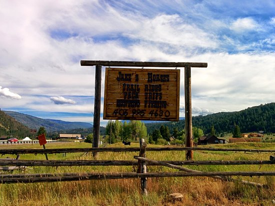Jake's Horses: The sign from the highway
