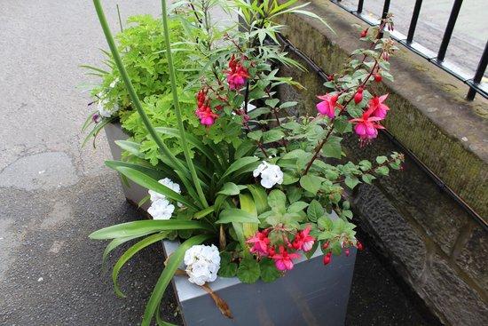 BEST WESTERN PLUS Edinburgh City Centre Bruntsfield Hotel: Beautiful flowers everywhere
