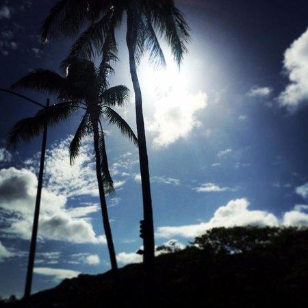 Sheraton Waikiki : ハワイの空