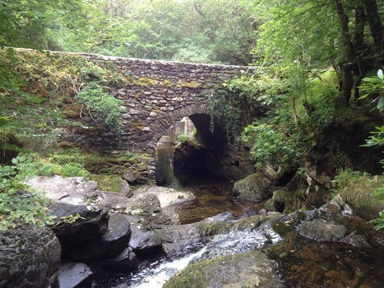 Torc Waterfall: Brücke auf dem kleinen Rundweg (35 min). Schöner Platz zum Pausieren und mit den Kindern am Wass
