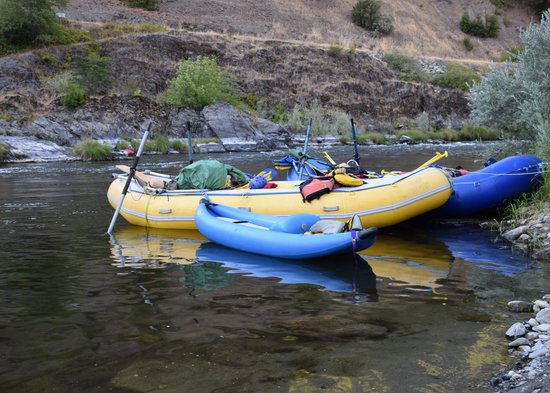 Momentum River Expeditions : early morning rafts in the river