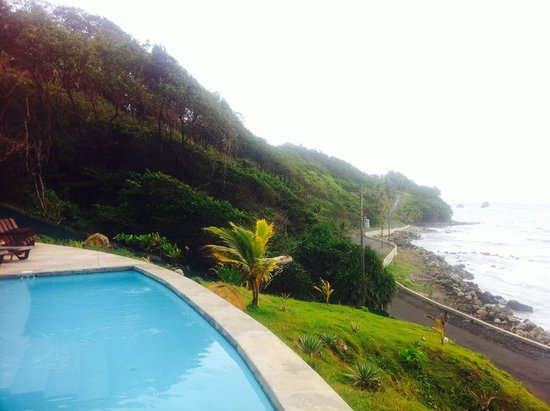 Pagua Bay House Oceanfront Cabanas: view from the pool