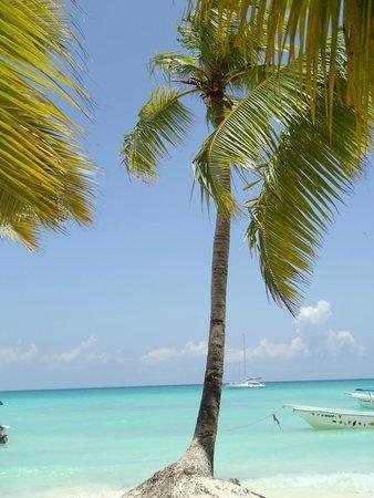 Secrets Royal Beach Punta Cana: Saona Island