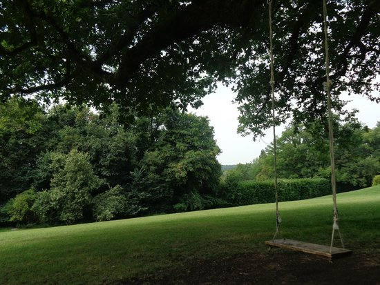 Domaine de la Tortiniere : Grounds with swing