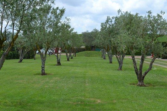 All Ways Garden Hotel & Leisure: All ways garden and leisure Roma