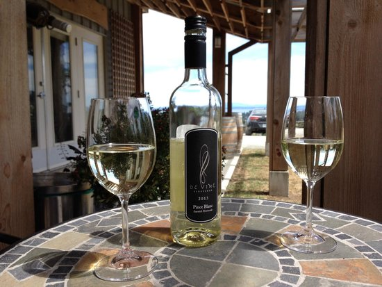 de Vine Vineyards: Outdoor eating and tasting area