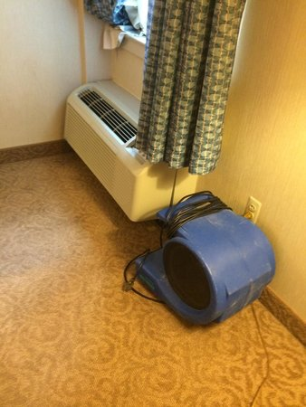 Hampton Inn Alexandria - Old Town/King Street Metro: Drying out the carpet from the AC unit.