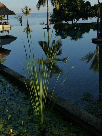 The Oberoi, Lombok : piscine principale