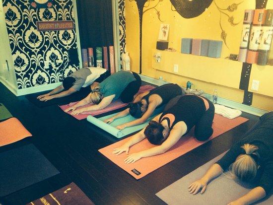 Thornton Park Yoga