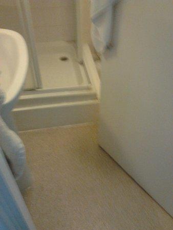 White Hart Country Inn : Shower, door gap
