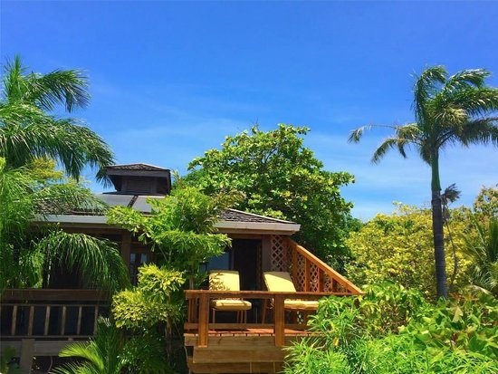 Tranquilseas Eco Lodge and Dive Center: island cabanas nestled in the canopy