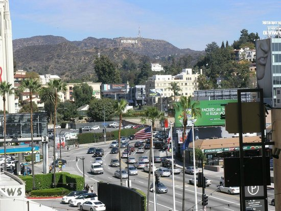 Loews Hollywood Hotel : Front view from hotel facing north
