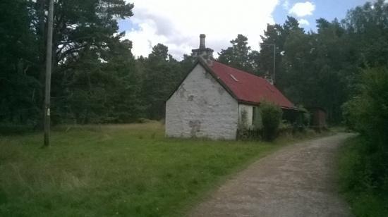 Loch an Eilein : Old bungalow